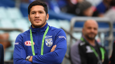 In the kennel: Dallin Watene-Zelezniak watches his new club train on Monday.