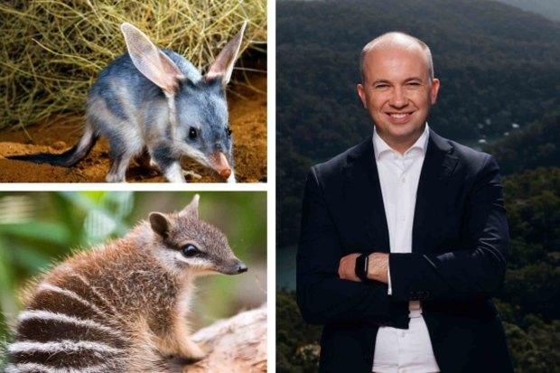 Radical plan to halt mammal extinctions in NSW