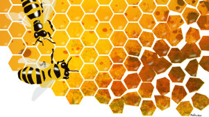 Awash with fakes': the honey makers holding the line in China's