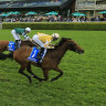 Underestimated Dame Giselle 'tickety boo' to sweep Princess Series