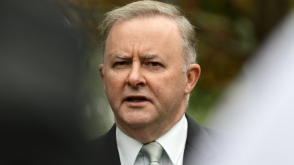 Albanese under pressure as employers back government's union-busting bill