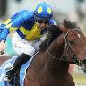 Group 1-winning jockey Hyeronimus has betting ban reduced on appeal