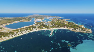 The new plans will allow tourists to drop in for a day on Rottnest.