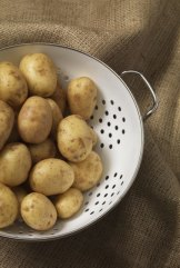 A home-grown spud is as much a delight as a home-grown tomato.