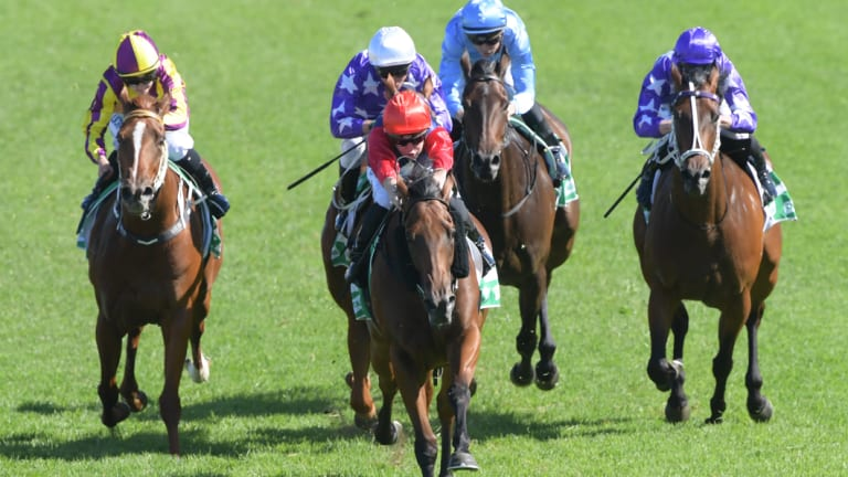 """""""Tye would have been on her today"""": Sweet Deal in the red colours kicks clear for Josh Parr at Rosehill."""