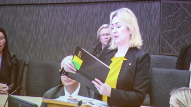 Craig Folbigg's barrister, Margaret Cunneen, SC, reads one of Kathleen Folbigg's diary entries.