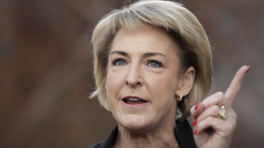 Employment and Skills Minister Michaelia Cash.
