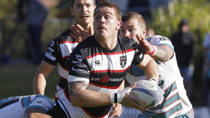 'Committed to fighting': West Harbour, Two Blues slam Shute Shield merger talk
