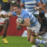 Argentina's new dawn faces a stern Springbok test