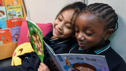 Primary schools dump 'predictable' picture books as reading tools