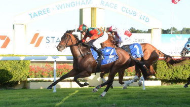 Racing returns to Taree on Monday with a seven-race card.