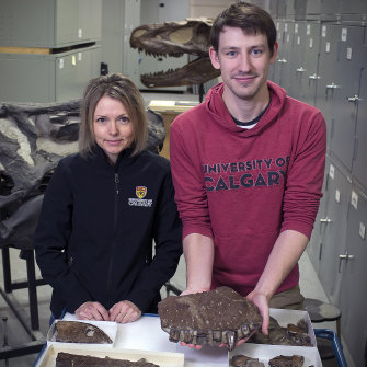 Darla Zelenitsky and Jared Voris with the bones he dusted off and identified as a new genus of dinosaur known as the Reaper of Death.