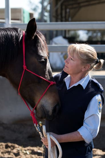 A retired racing horse with guard Janelle Bowden.