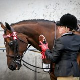 Ms McIntyre and her horse Sirmione, a former racehorse trained by Bart Cummings, at the Melbourne Show competing in Garryowen. 22 September 2015. The Age NEWS. Photo: Eddie Jim.