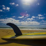 Surfing WA has temporarily suspended future events