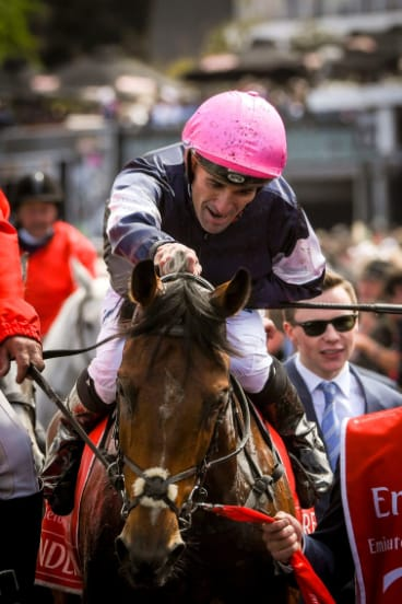 Young gun: Rekindling and jockey Corey Brown after winning last year's Melbourne Cup.