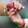 'He'd sweat in an igloo': Cricketers to get creative after saliva ban
