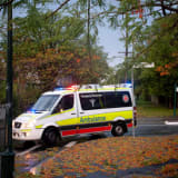 A Queensland paramedic claims he was forced to reign due to PTSD