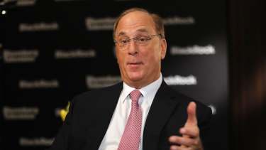 """We will see changes in capital allocation more quickly than we see changes to the climate itself,"" says star investor Larry Fink."