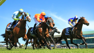 Bring The Ransom (right) can win again at Randwick on Saturday.