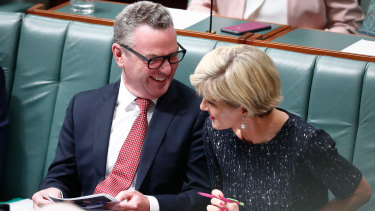 Julie Bishop and Christopher Pyne could face another ministerial standards investigation.