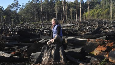 Long struggle: Sarah Rees at a logged area of Toolangi state forest in 2011.