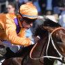 Spend up: $1.5million colt makes winning debut at Rosehill