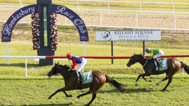 Racing returns to the Hawkesbury track on Tuesday.