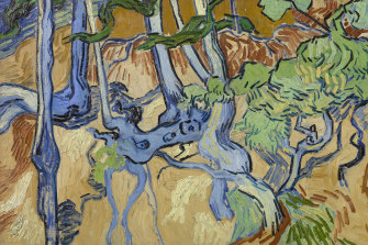 Tree Roots: Vincent van Gogh spent his final day working on the painting, according to researchers.
