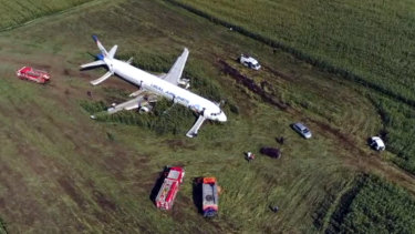 The Russian Ural Airlines' A321 plane landed in a corn field.