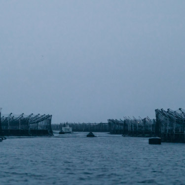 Salmon pens lining the D'Entrecasteaux Channel in Tasmania.