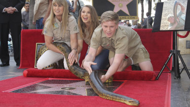 Robert Irwin from right, Bindi Irwin and Terri Irwin try to hold the South American Green Anaconda named Angelina at the ceremony.