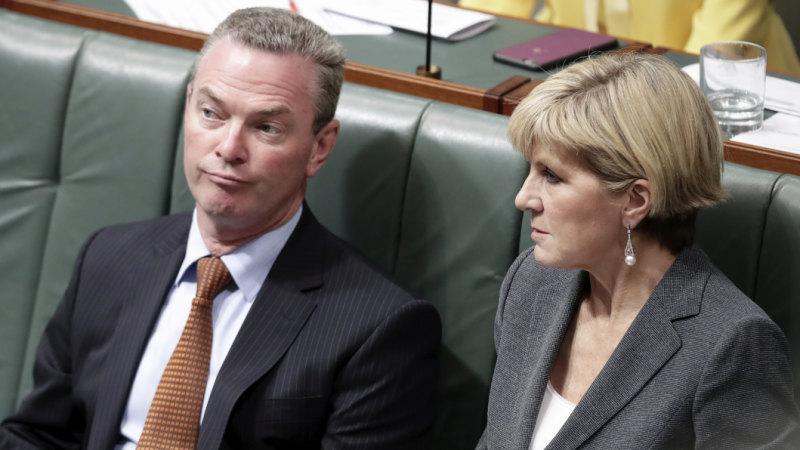 Christopher Pyne and Julie Bishop spark PM to order