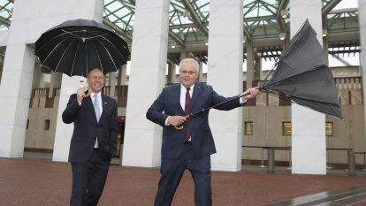 An inside-out umbrella for an upside-down budget