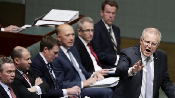 Parliament is no more diverse now than it was in 1988 as political staffer ranks explode