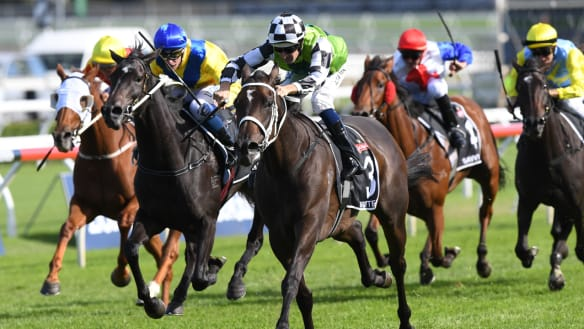 Waller set to dominate Epsom and Metrop fields