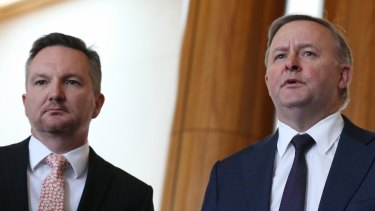 Treasury spokesman Chris Bowen and infrastructure spokesman Anthony Albanese are both contenders for the Labor leadership.