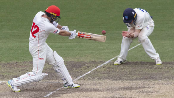 Redbacks frustrate Blues to grind out Sheffield Shield draw
