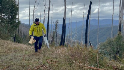 Police say likely other parties involved in disappearance of campers as new lead spurs Mount Hotham search