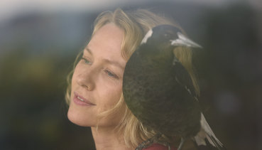 Out in January: Naomi Watts with magpie co-star in Penguin Bloom.