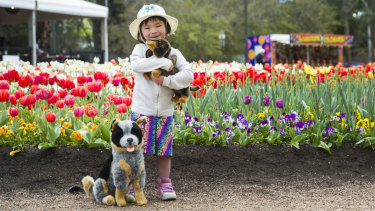 Candice Nguyen, 4, of Bonner cuddles toy dogs (courtesy of Wombat Cards and Gifts) as the final day at Floriade approaches and will be a 'Dog's day out' event.