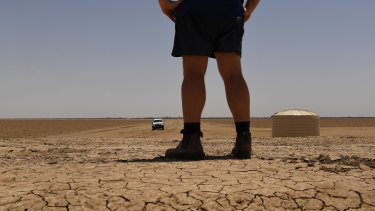 The manager of cotton farm, Darling Farms in North Bourke, stands on the bank of a dry irrigation channel looking out over the paddocks where cotton is grown.