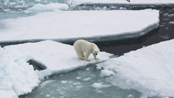 Arctic is in even worse shape than realised
