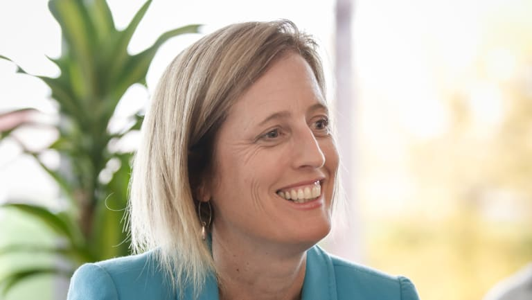 Former ACT senator Katy Gallagher has announced she will run for Senate preselection, sparking a lower house race to represent the party in Canberra.