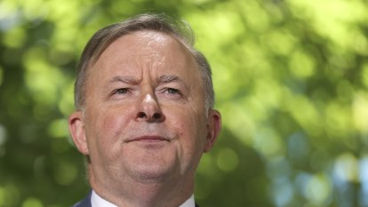 Albanese lashes Morrison for cosying up to Trump in first major foreign policy speech