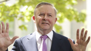 Anthony Albanese says Ken Wyatt's proposal for an Indigenous Voice to government ignores the key demand to write it into the Constitution.