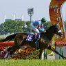 Epic Japan Cup victory for Almond Eye, Wilde Jericho Cup at 'Bool