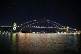 The Sydney Opera House and Harbour Bridge were illuminated in yellow for road safety week in November yet experts say a well proven method of saving lives is not being used in NSW for political reasons.