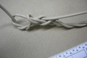 The cord Bradley Edwards used to tie up his rape victim in 1995.