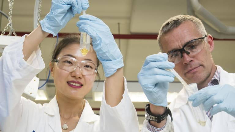 Professor Mark Taylor and student Xiaoteng Zhou at Macquarie University have completed a survey of 100 samples of honey which shows Australia has adulterated honey.